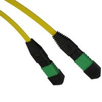 15m 9/125 Standard MTP Fiber Patch Cable