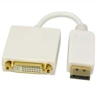 Display Port Male to DVI Female Adapter