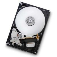 Hitachi/IBM 1TB SATAII 7200RPM/32GB