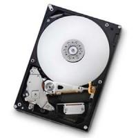 Hitachi/IBM 1TB SATAII 7200RPM/32GB