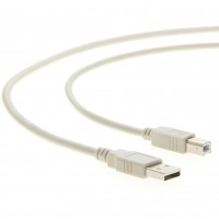 10Ft A-Male to B-Male USB2.0 Cable Ivory